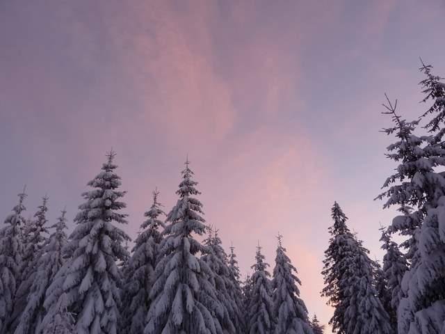 Góry Bystrzyckie Spalona trasy biegowe zima