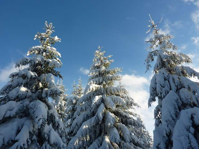 Góry Bystrzyckie, Jagodna, Spalona, zima