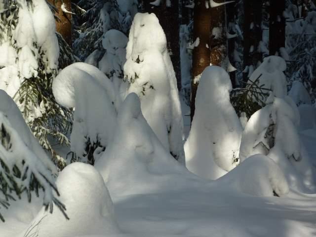 Góry Bystrzyckie, Sudety, Zima