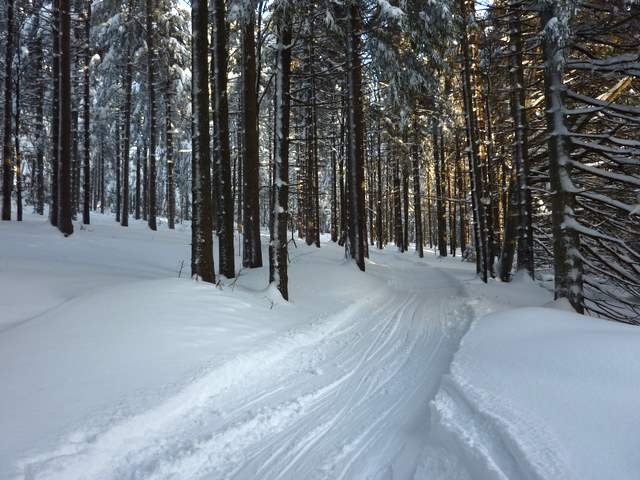 Góry Bystrzyckie Spalona trasy biegowe