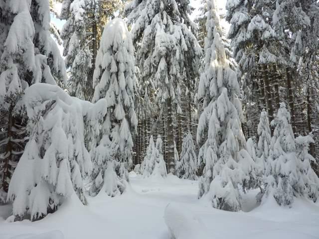 Góry Bystrzyckie zima