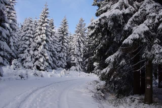 Jakuszyce,  Góry Izerskie, śnieg trasy biegowe