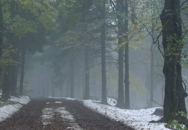 Ścieżka rowerowa, Wielka Sowa, góry Sowie