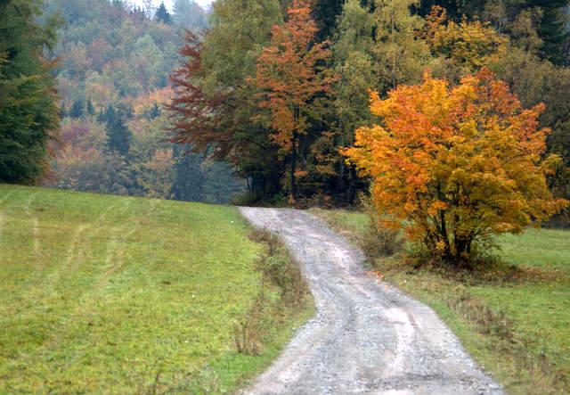 Góry sowie jesień