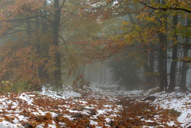 jesień w górach sowich