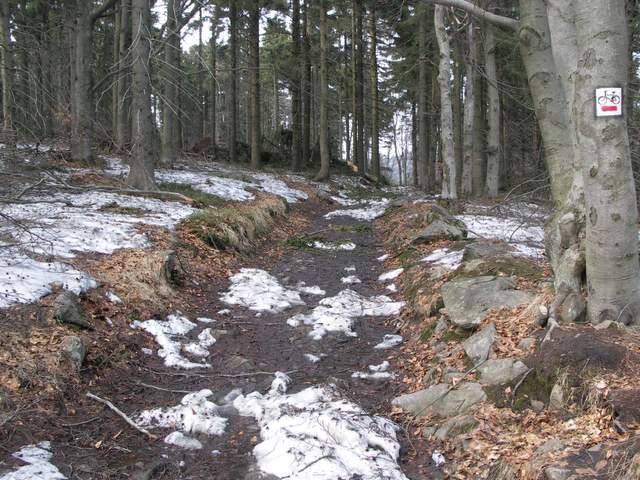 Góry Sowie