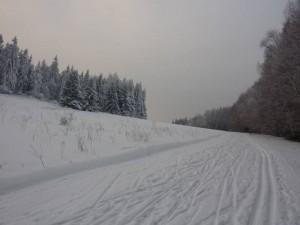 Góry Stołowe,Błędne Skały,Skalne Grzyby,Szczeliniec Wielki