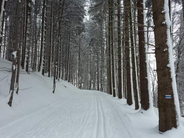Góry Stołowe, Karłów , Pasterka trasy biegowe