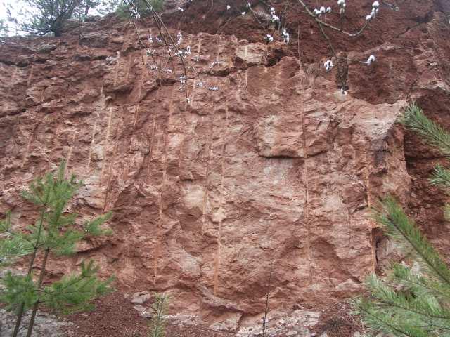 kamieniołom Zygmuntówka, Ślady po świdrach, korzenie roślin