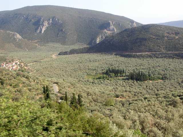 Dolina Oliwkowa, góry Pindos