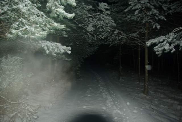 Szlak czerwony Rzędkowice Podlesice