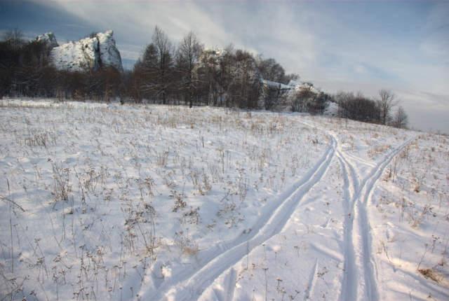 narty biegowe i śladowe