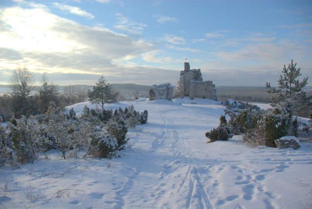 Mirów, ruiny zamku