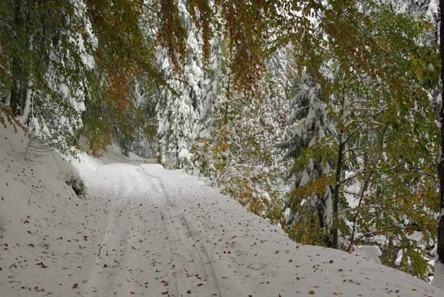 Dolina Mumlavy