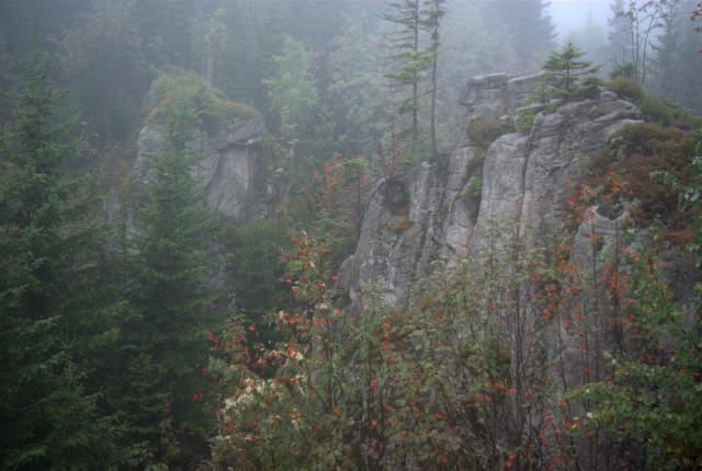 Dolina Pląsawy, skalna brama