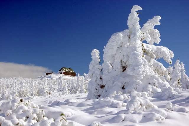 Szrenica zimą