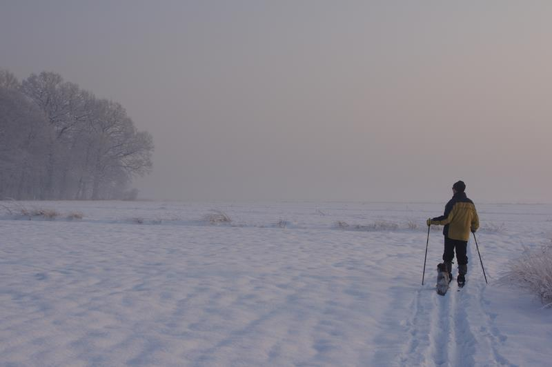 Gliwice na nartach biegowych