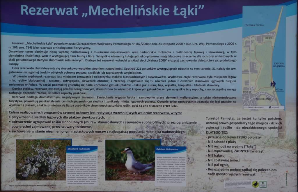 rezerwat Mechelińskie łąki