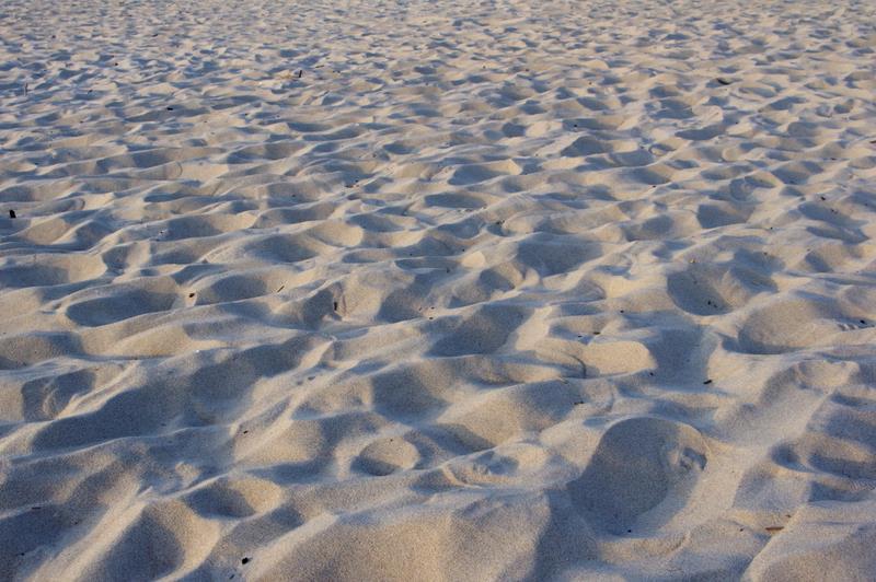 piasek nadmorski