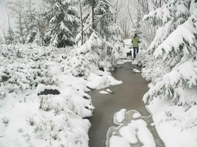 Szlak ze Stożka na Kiczory
