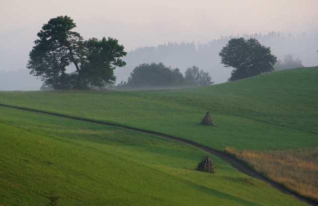 Cieńków, krajobraz rolniczy