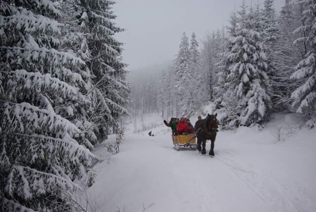 Kulig, śnieżne sanie