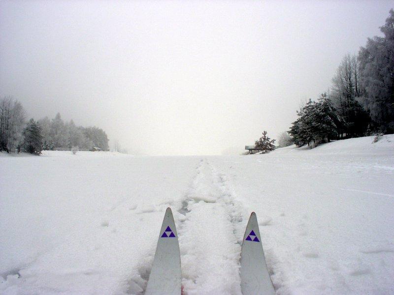 Nakło Chechło na nartach biegowych