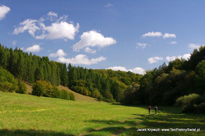 dolina Sąspowska