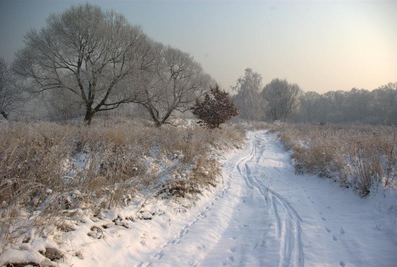 zimowy pejzaz