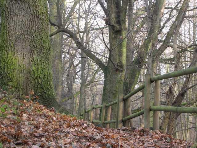 Ścieżka przyrodnicza-dydaktyczna, Szwajcaria Rachowice