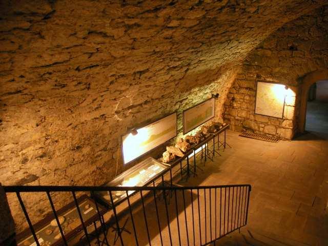 Gotycka krypta - wystawa geologiczna