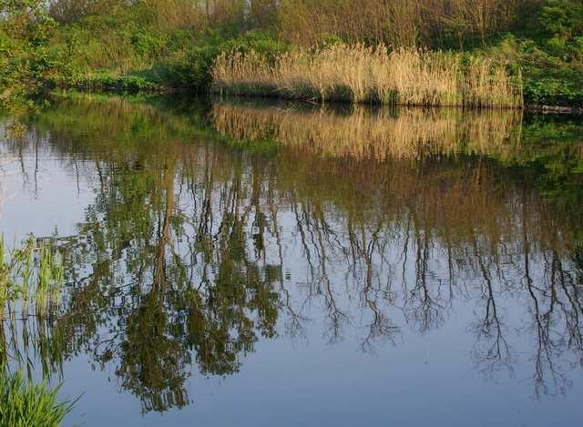 Kanał w okolicach Dzierżna