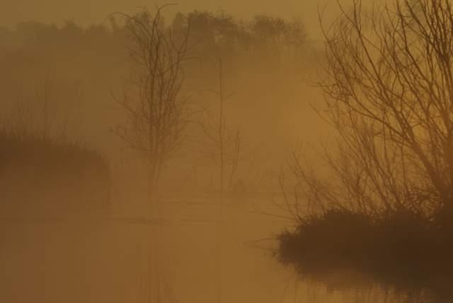 Jezioro Farskie o świcie