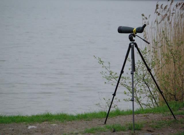 Wielikąt, luneta, sprzęt do obserwacji ptaków
