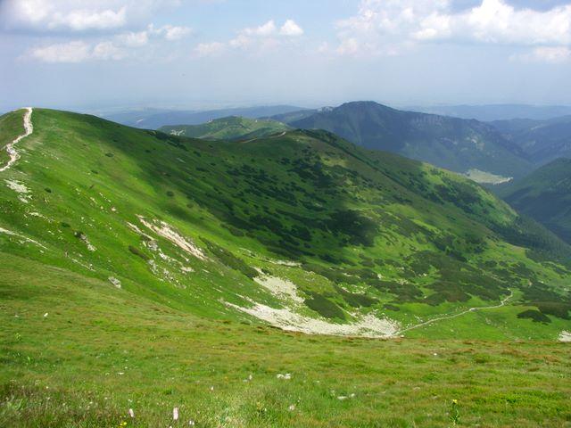 Rakoń, Grześ, Dolina Chochołowska