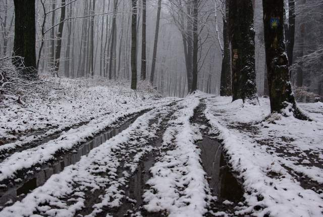 droga na Ślężę