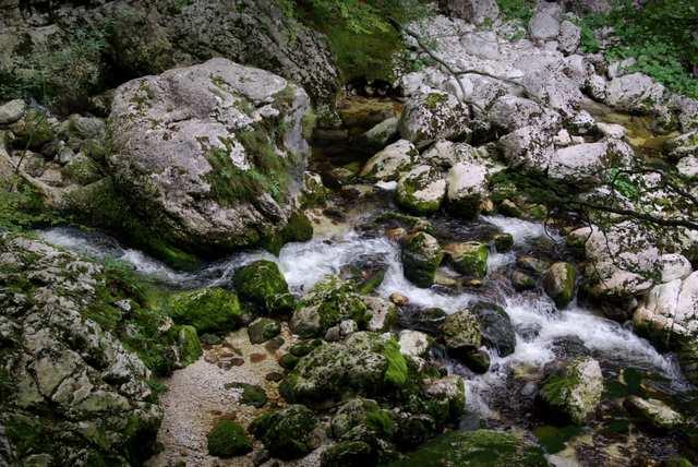 Rzeka Savica