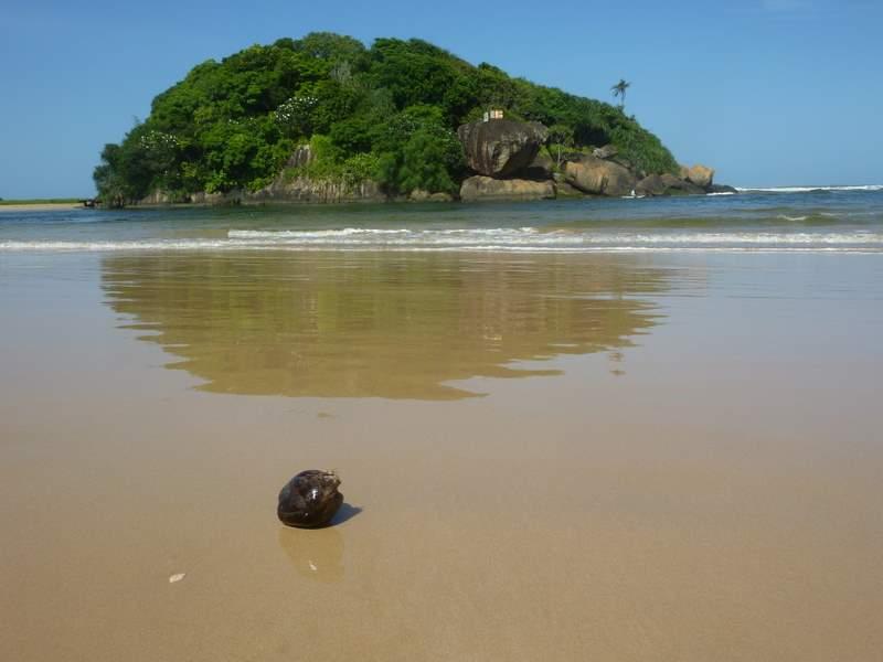 plaża Beruwela