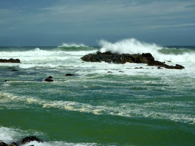 plaża, sri lanka, cejlon