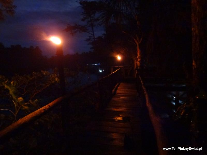 Noc nad Orinoko