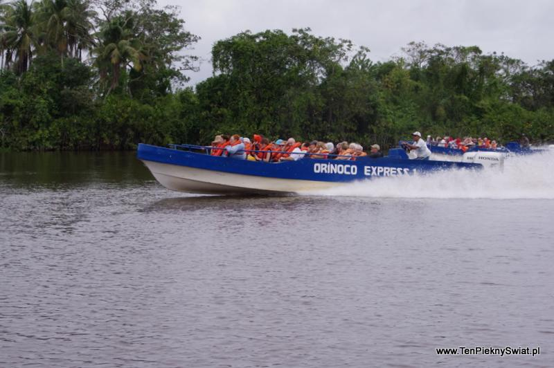 Orinoco Express  Orinoko