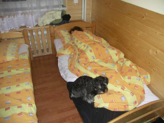 Beatka i Fiona poszli spać, psssttt